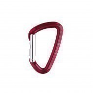 Salewa Karabiner 'HOT G2' straight, rot